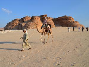 South Sinai Discovery