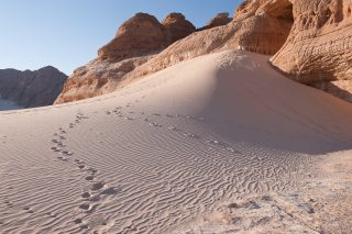 Discovering silence in Sinai