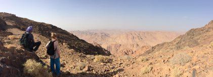 Trekking Sinai's Summits